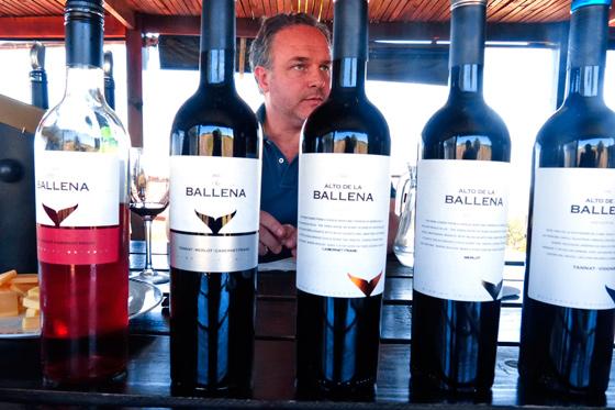 ¿Punta del Este parte de la ruta del vino uruguayo?