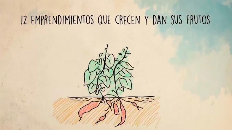 """""""Creer es crear"""": un ciclo sobre microemprendimientos uruguayos"""