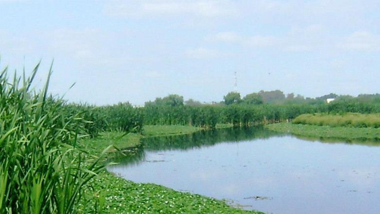 La Laguna de Rocha se suma el listado de sitios reconocidos por su manejo de ecosistemas