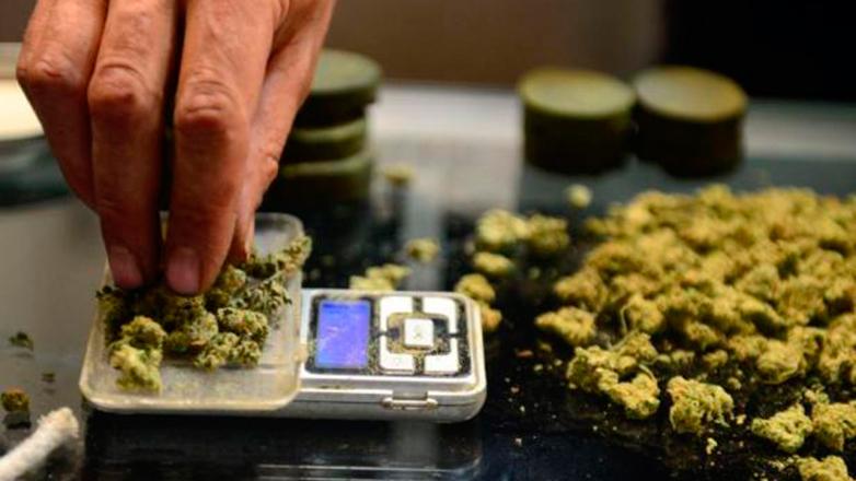Uruguay da un nuevo paso para concretar la distribución de cannabis psicoactivo desde las farmacias