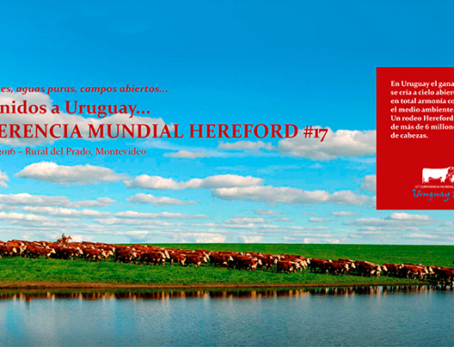 Todo pronto en Montevideo para el comienzo de la 17ª Conferencia Mundial Hereford