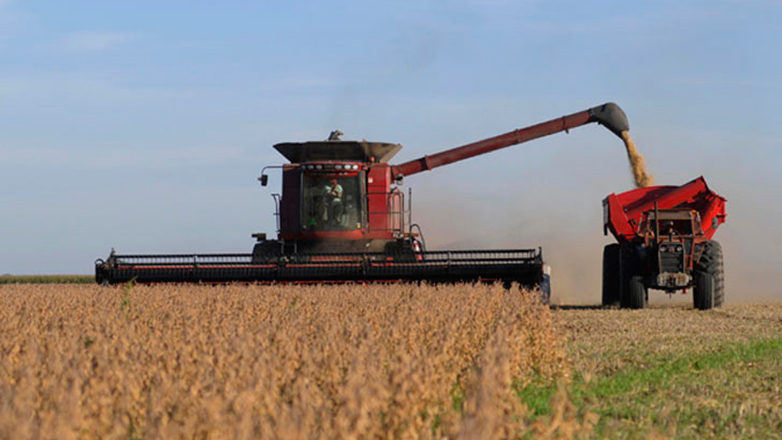 China comprará a Uruguay: maíz, cebada, arándanos y sorgo y firmará 20 convenios diplomáticos