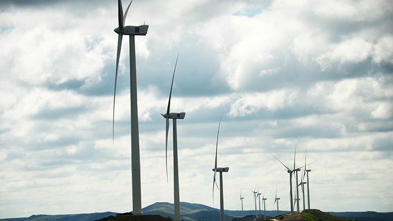 Inversión de 800 millones de dólares en parques eólicos sumará 350 megavatios a matriz eléctrica