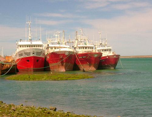 ONU distinguió a Uruguay por control de pesca ilegal y ratificación de acuerdo internacional