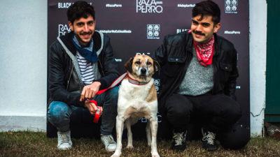 """La campaña """"Raza Perro"""" de Black & Liberty, promueve la adopción de perros que necesitan dueños responsables"""