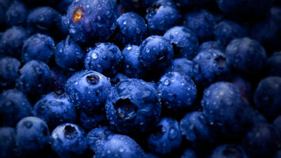 China opened its market to Uruguayan blueberries