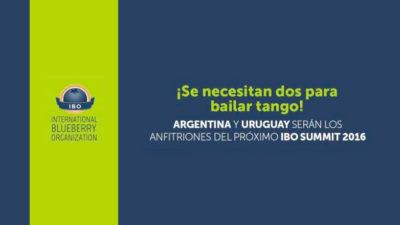 Congreso Mundial de Arandanos