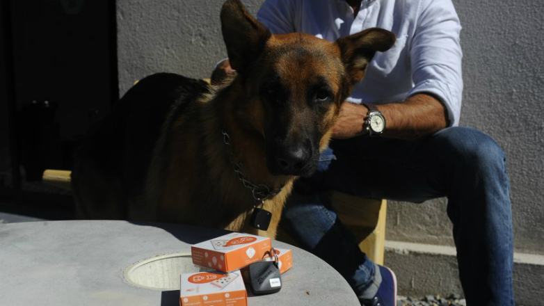 """Un dispositivo """"comunitario"""" para encontrar perros extraviados"""