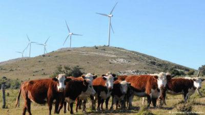 Uruguay: energía natural