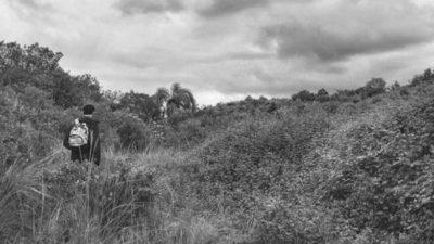Ambá: un proyecto privado que quiere recuperar y conservar la fauna y flora de las sierras de Rocha