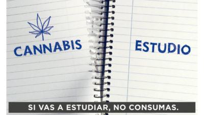 """Campaña uruguaya """"Regular es ser responsable"""" buscará prevenir el consumo de cannabis"""