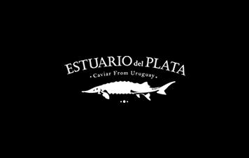 Estuario del Plata