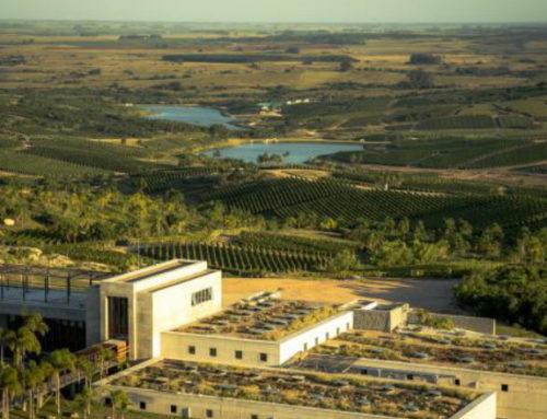Garzón pone el vino en festejo de los «50 mejores restaurantes» del mundo