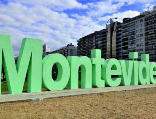 Montevideo se pinta de verde por el Día del Medio Ambiente y realiza varias actividades