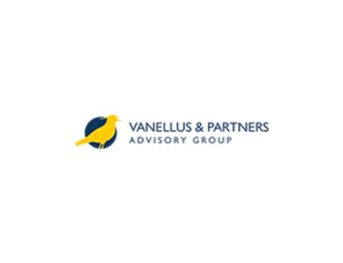 Vanellus Advisors