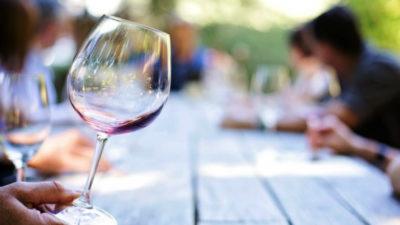 Bodega de Sauce produce 50 mil botellas de vino orgánico