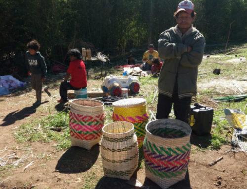 El MAPI, la UDELAR y el MIDES apoyan a grupo indígena mbya-guaraní en Cerro Largo