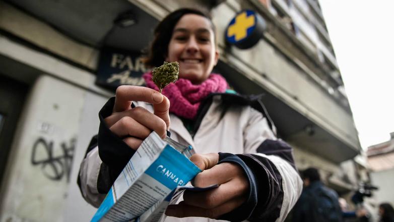 Marihuana legal en Uruguay: balance de las primeras semanas