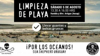 Sea Shepherd Uruguay invita a limpiar playas de Montevideo, este sábado 5 de agosto