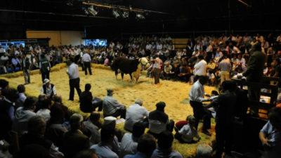 EEUU habilitó el mercado a Uruguay, que ahora irá por más mercados
