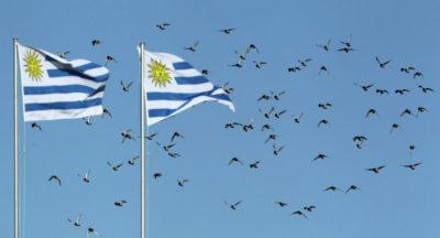 Uruguay está consolidando un rol dual en materia de cooperación internacional