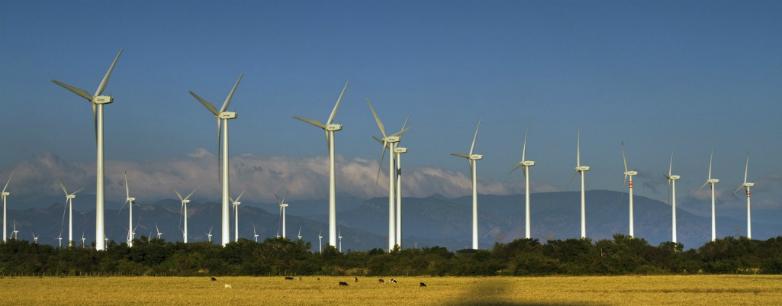 """""""Hace diez años Uruguay era un importador neto de energía y hoy es un país exportador y un referente para el mundo"""""""