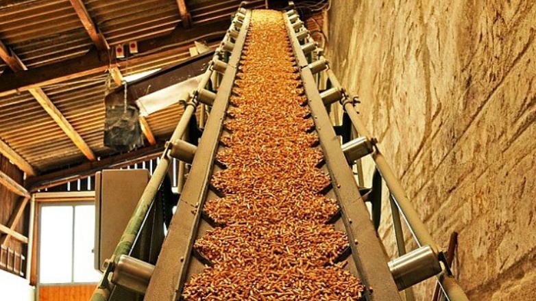 Balance energético: por primera vez la biomasa superó al petróleo y derivados