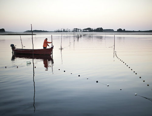 Pesca de camarón en el arroyo Valizas