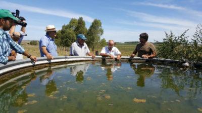 El caso del productor que en plena sequía tiene toda el agua que necesita