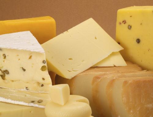 Los mejores quesos del Uruguay se elegirán en el MAM