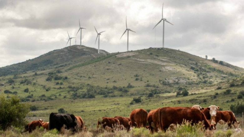 """Destacan la """"revolución"""" energética de Uruguay"""