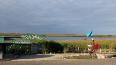 """""""Descubrimos por qué Griezmann es fan de Uruguay"""": revista francesa y su viaje al """"país más cool"""""""