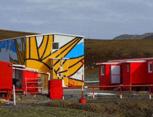Contra viento y frío polar: el sol brilla en la Antártida