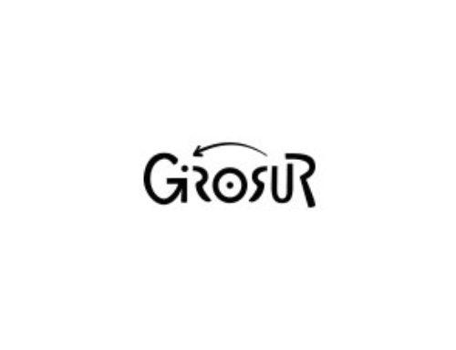 Girosur