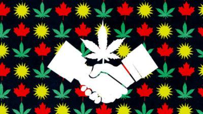 Uruguay y Canadá: socios en defensa de la marihuana