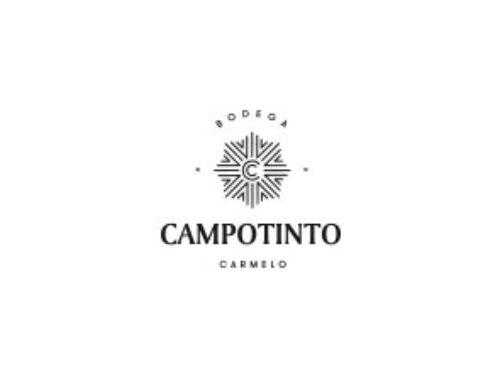 Campotinto