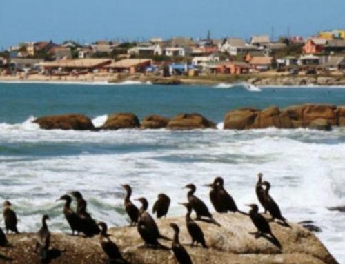 Uruguay según el New York Times: barato y con «una vibra que es como Xanax para el alma»