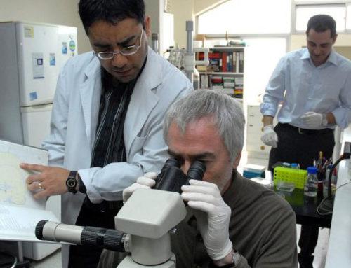 Científicos uruguayos en el exterior contarán con una red digital para intercambiar conocimientos