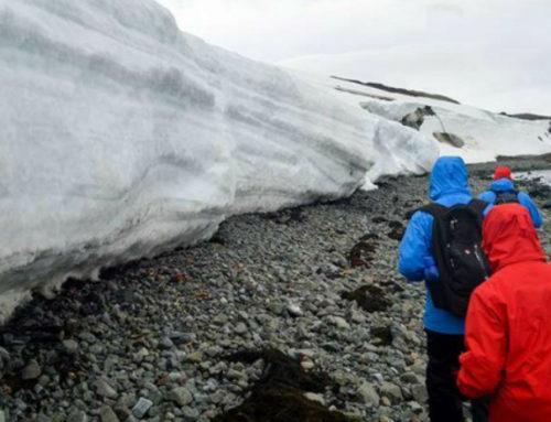 """El clima de """"ciencia, paz y cooperación"""" en Antártida"""