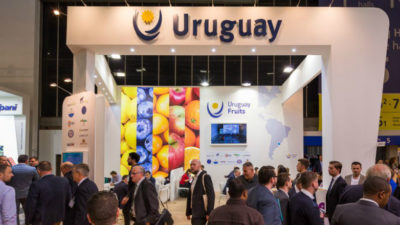Cítricos y arándanos serán los protagonistas uruguayos de Fruit Logistica en Berlín