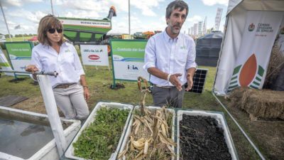 Red de Buenas Prácticas Agropecuarias promueve la siembra directa y los refugios en los cultivos de soja y maíz