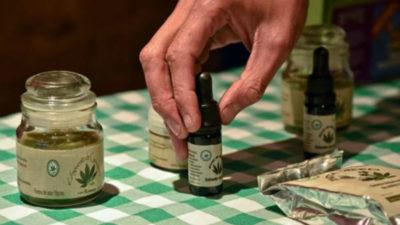 Empresa canadiense compró a una uruguaya de cannabis medicinal