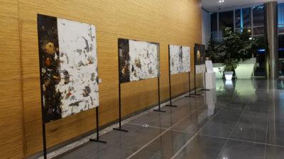"""ACCS Visual Arts presenta la muestra """"Bruno Widmann, un encuentro con el maestro"""""""