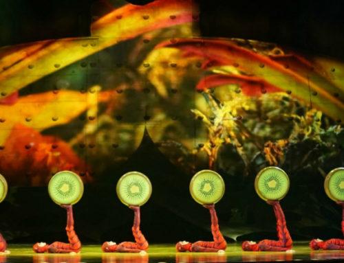Así es Ovo, el show que el Cirque du Soleil presenta desde el jueves en Montevideo