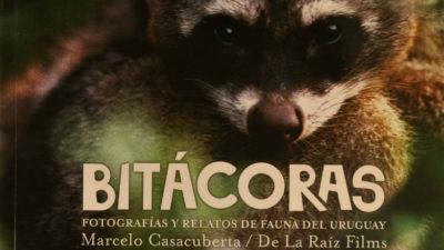 El libro Bitácoras nos propone descubrir la fauna que habita distintos ecosistemas de Uruguay