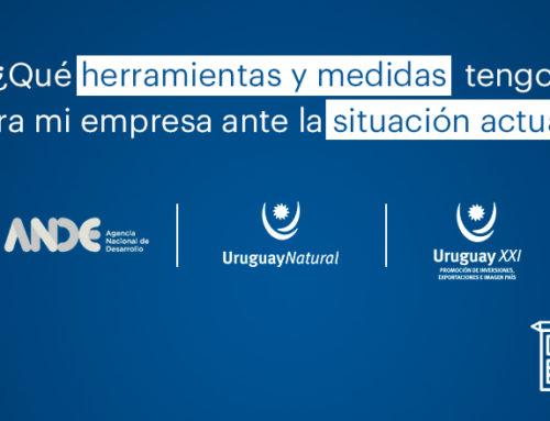 """Marca País Uruguay en """"la nueva normalidad"""": se realizó el primer taller online para empresas socias"""