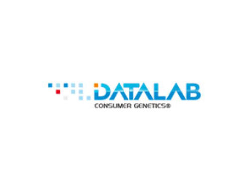 Datalab Consulting