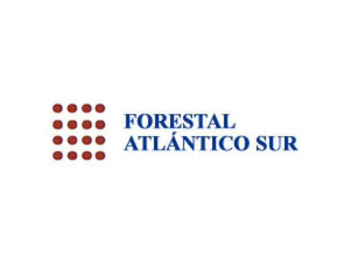Forestal Atlántico Sur