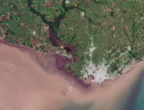 «Hola, Montevideo! Eres hermosamente colorida»: el mensaje del exastronaunta Chris Hadfield