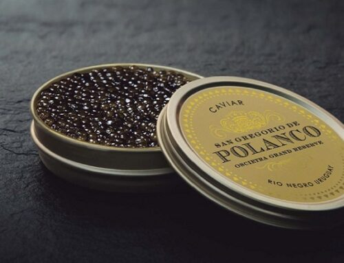 Caviar Demand Is Starting to Recover for Latin American Exporter